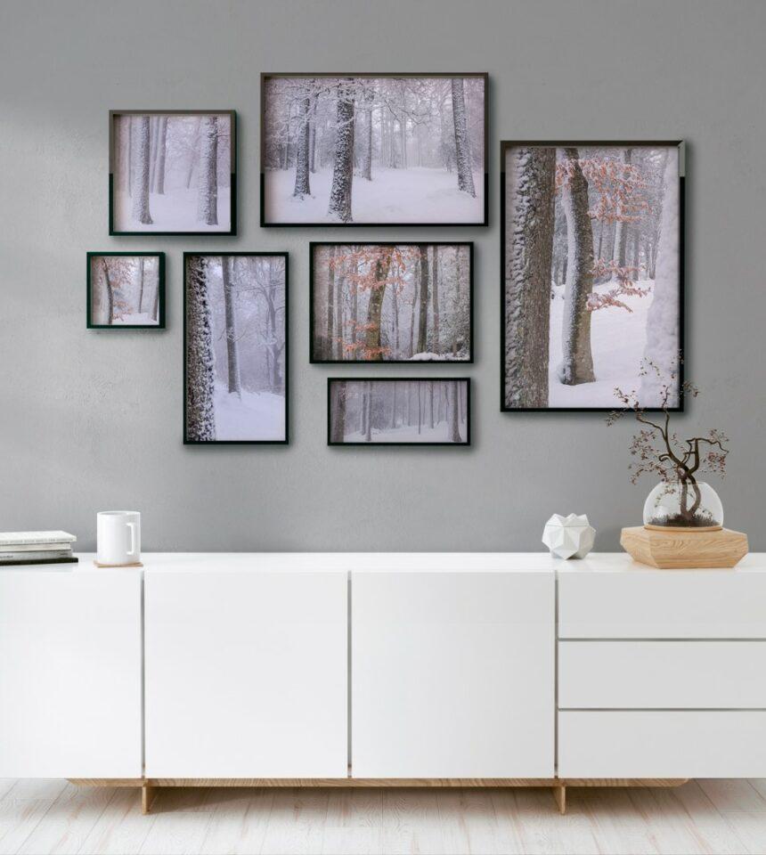 Colección Snow