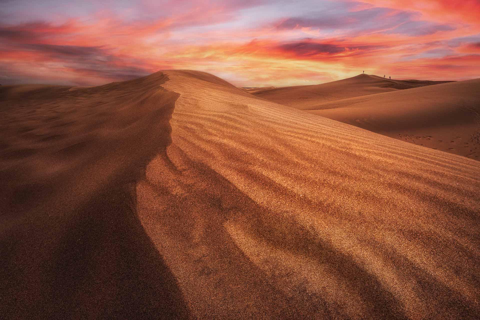Colección Golden Desert
